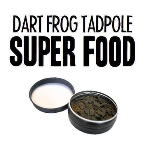 Dart Frog Tadpole Super Food
